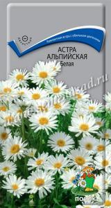 Астра альп. Белая 0,04 гр. (многолетник)