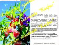 Бальзамин Розовые грезы, смесь (20пак*1 гр.) Германия