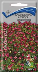 Камнеломка Арендса Пурпурный ковер 0,01 гр.