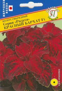 Колеус Радуга Красный бархат 10 шт.