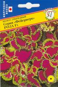 Колеус Фейерверк Роза 10 шт.