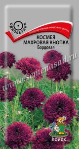 Космея Махровая кнопка Бордовая 0,1 гр.