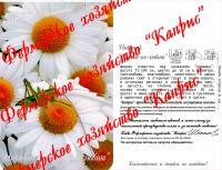 Нивяник Белый/Любит-не-любит (20пак*0,5 гр.)