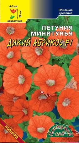 Петуния минитунья Дикий Абрикос