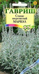 Стахис Марвэл шерстистый 0,05 гр.