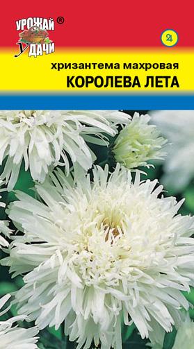 Хризантема Королева Лета 0,03 гр.