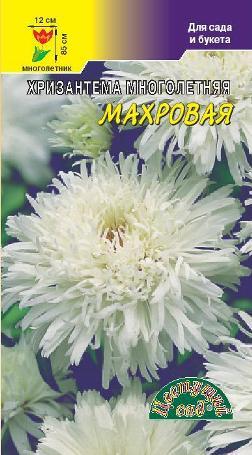 Хризантема Махровая Белая многолетняя 0,03 гр.