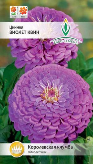 Цинния Виолет Квин 0,3 гр.