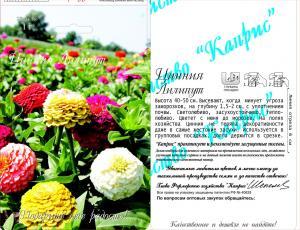 Цинния Лилипут, смесь (20пак*1 гр.)