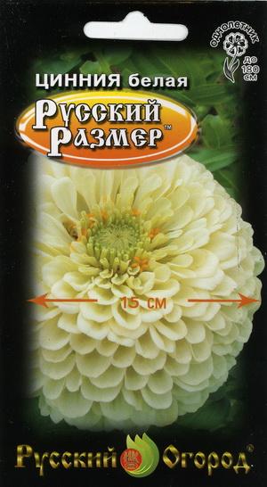Цинния Русский размер Белая 10 шт.