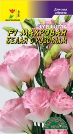 Эустома Махровая белая с Розовым 5 шт.