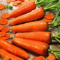 Морковь Медовый Спас 1г