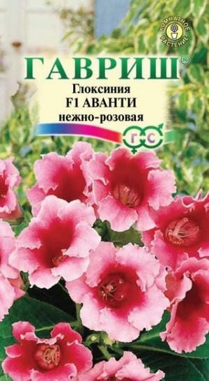 Глоксиния Аванти нежно-розовая 5шт