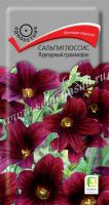 Сальпиглоссис Пурпурный граммофон 0,01г